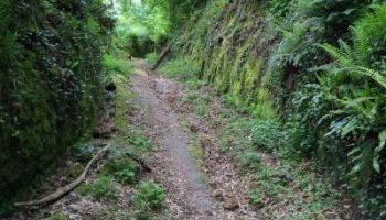 Il-sentiero-verso-la-Valle-del-Lente